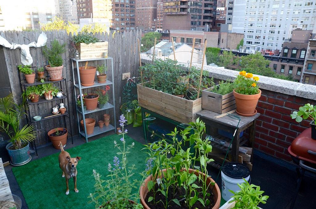 Tuinieren Op Balkon : Maak van je balkon een mini tuin tuinweb