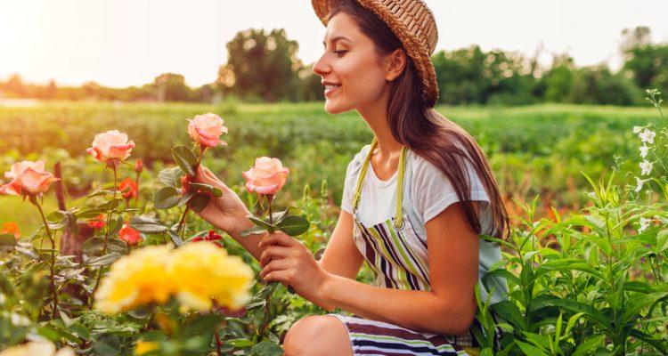 tuin inrichten met een klein budget