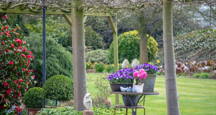 Landelijke tuin inrichten