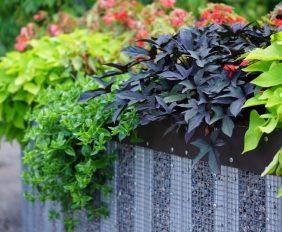 nieuwe tuin aan laten leggen