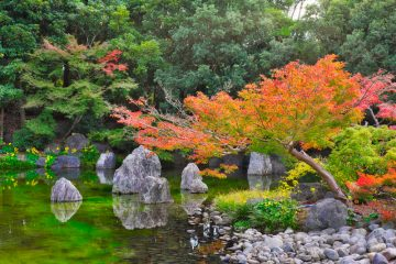 Een Japanse tuin aanleggen