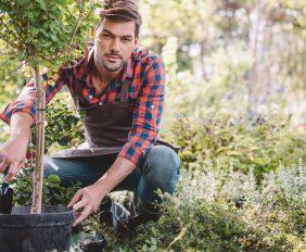 de voordelen van een tuinman
