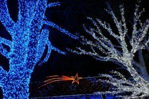 versier je jouw tuin met kerstverlichting
