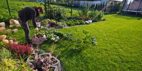 onderhoudsvriendelijke-tuin