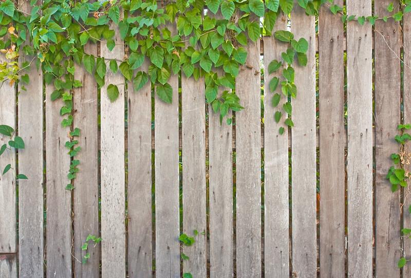hout in de tuin verwerken