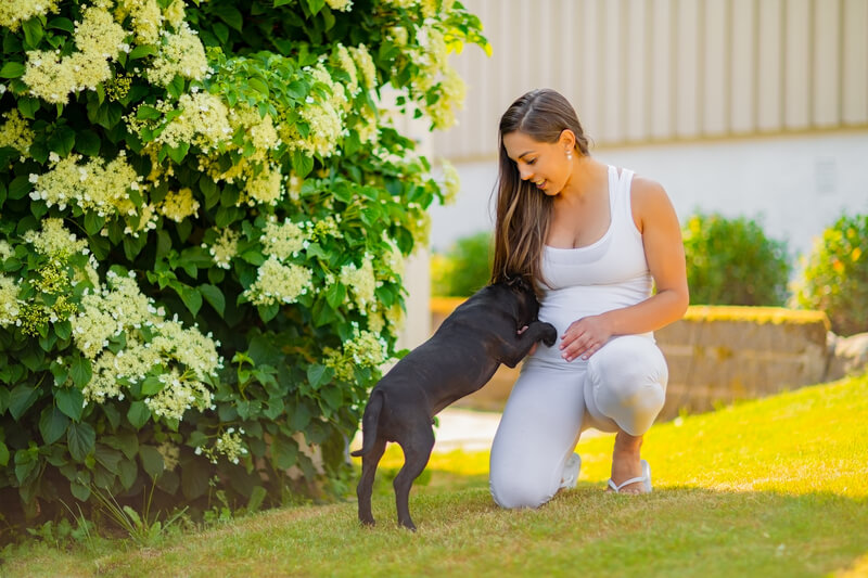 tuin hondvriendelijk maken